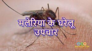 मलेरिया के घरेलू उपचार